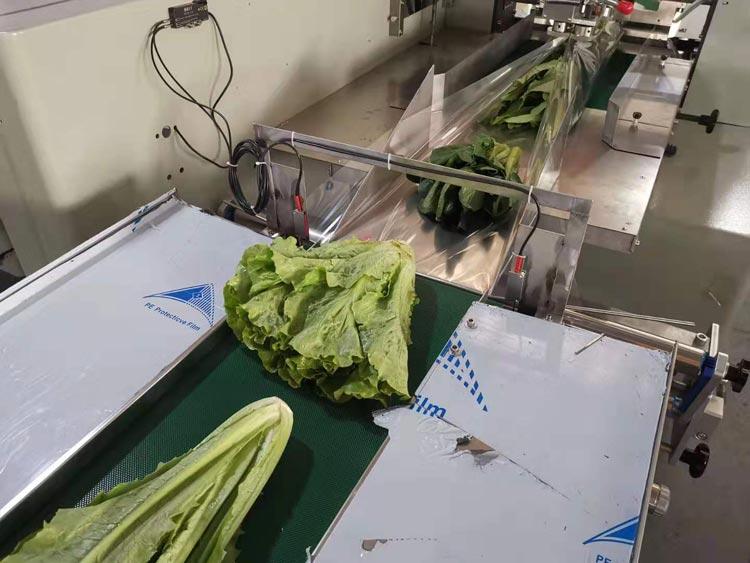 青菜蔬菜包装机